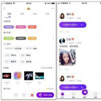 1对1视频聊天交友社交开源源码 独立Android+iOS系统源码